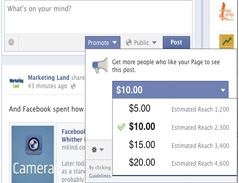 Paid Social